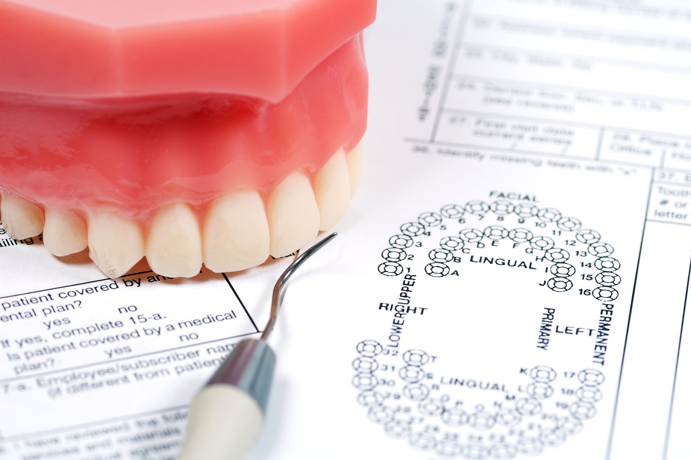 Dental Quotes Glossary  Longmeadow Family Dental Care